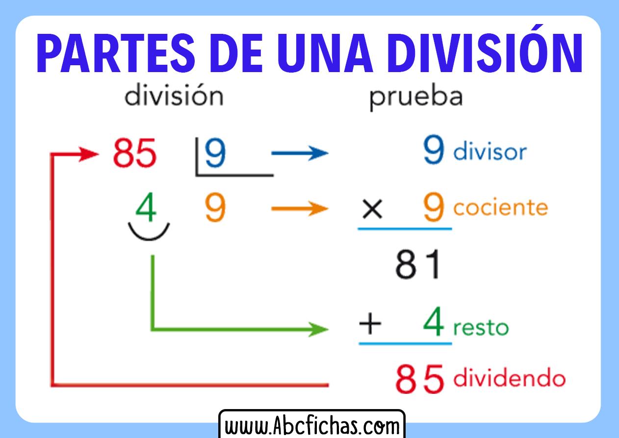 Partes de una division