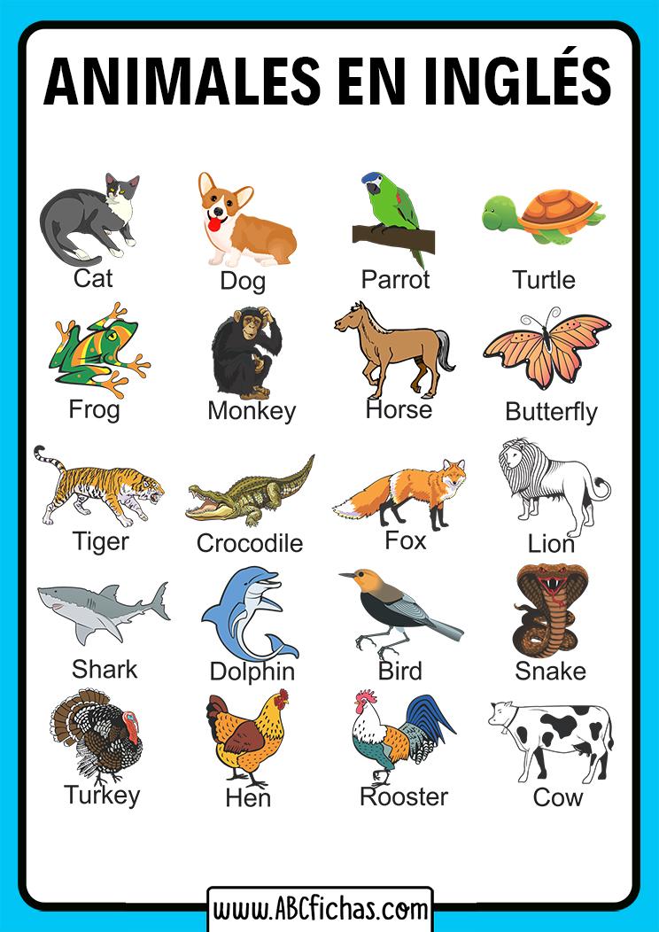 Vocabulario de los animales en ingles