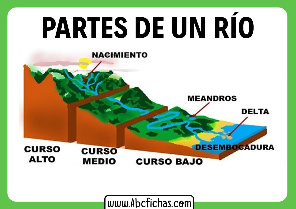 El rio y sus partes