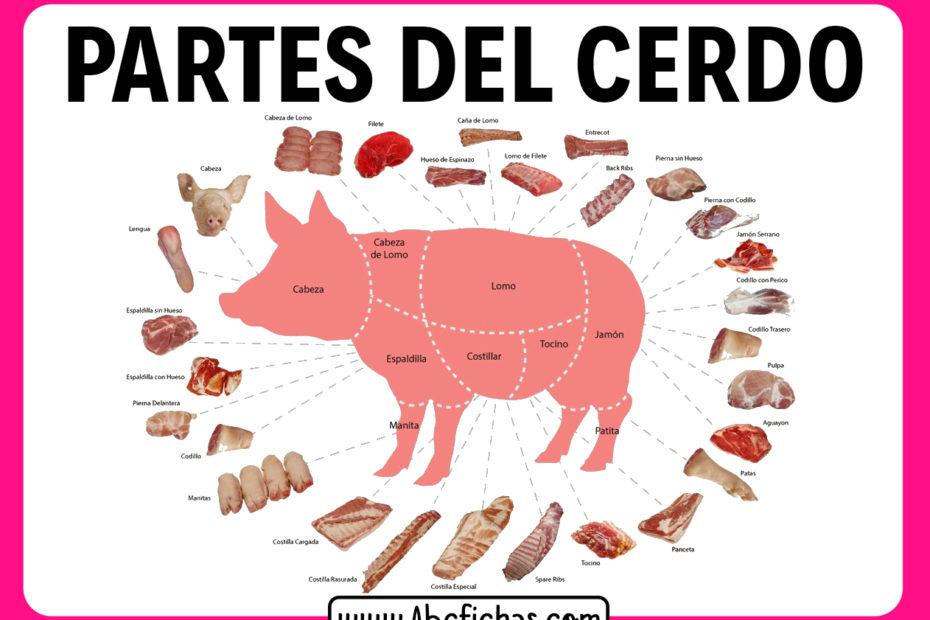 El cerdo y sus partes