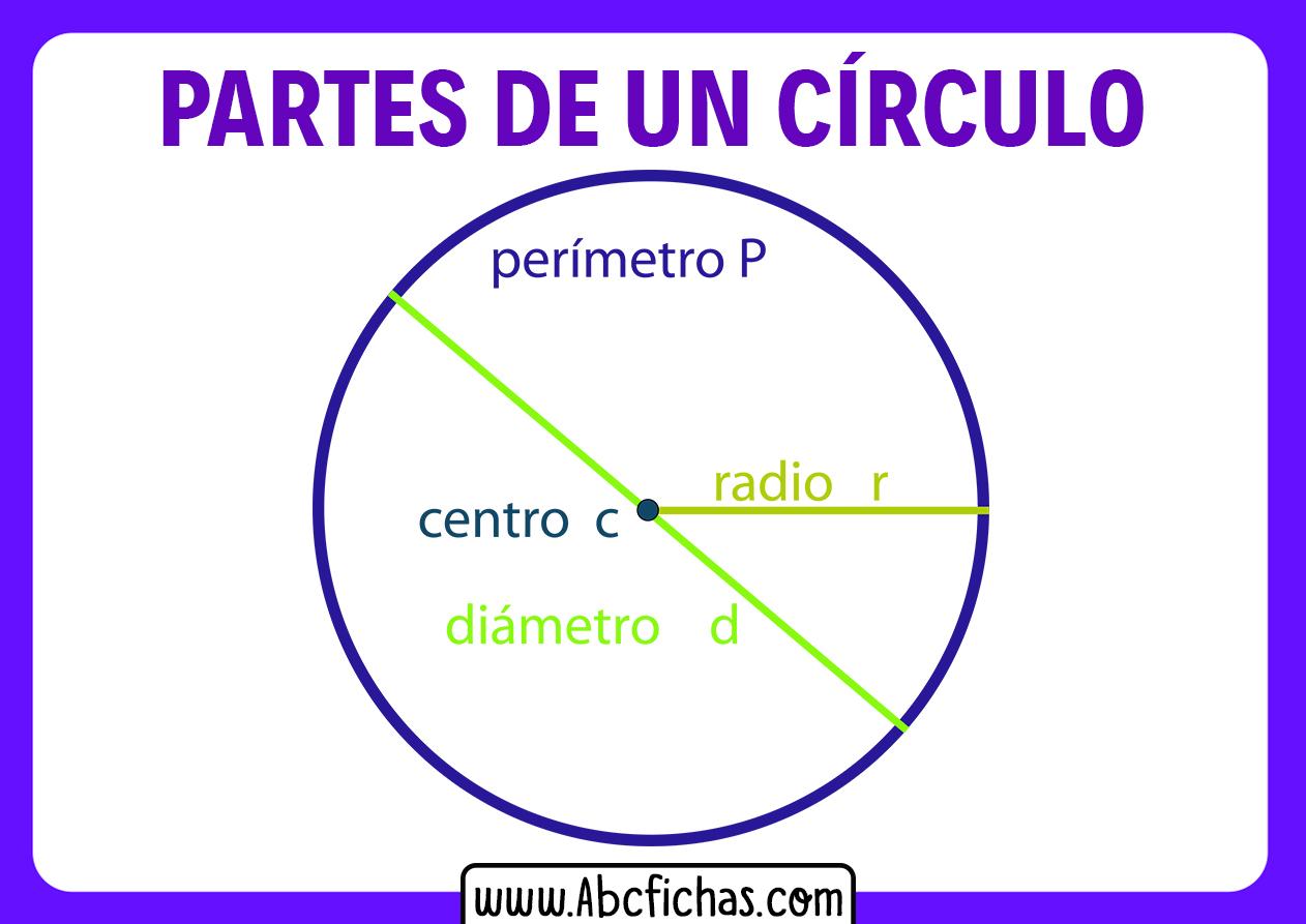 Elementos de una circunferencia