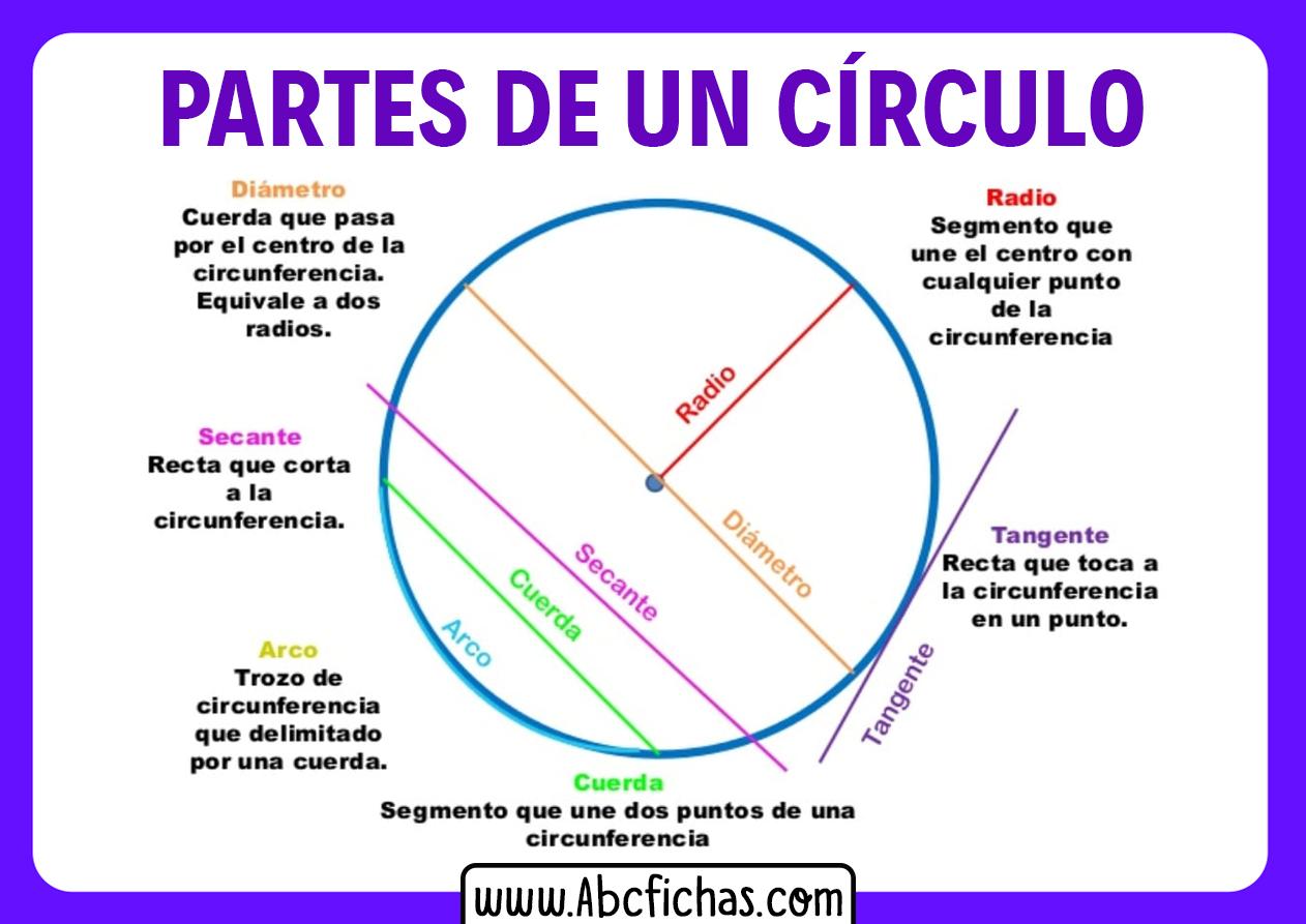 Las partes de un circulo