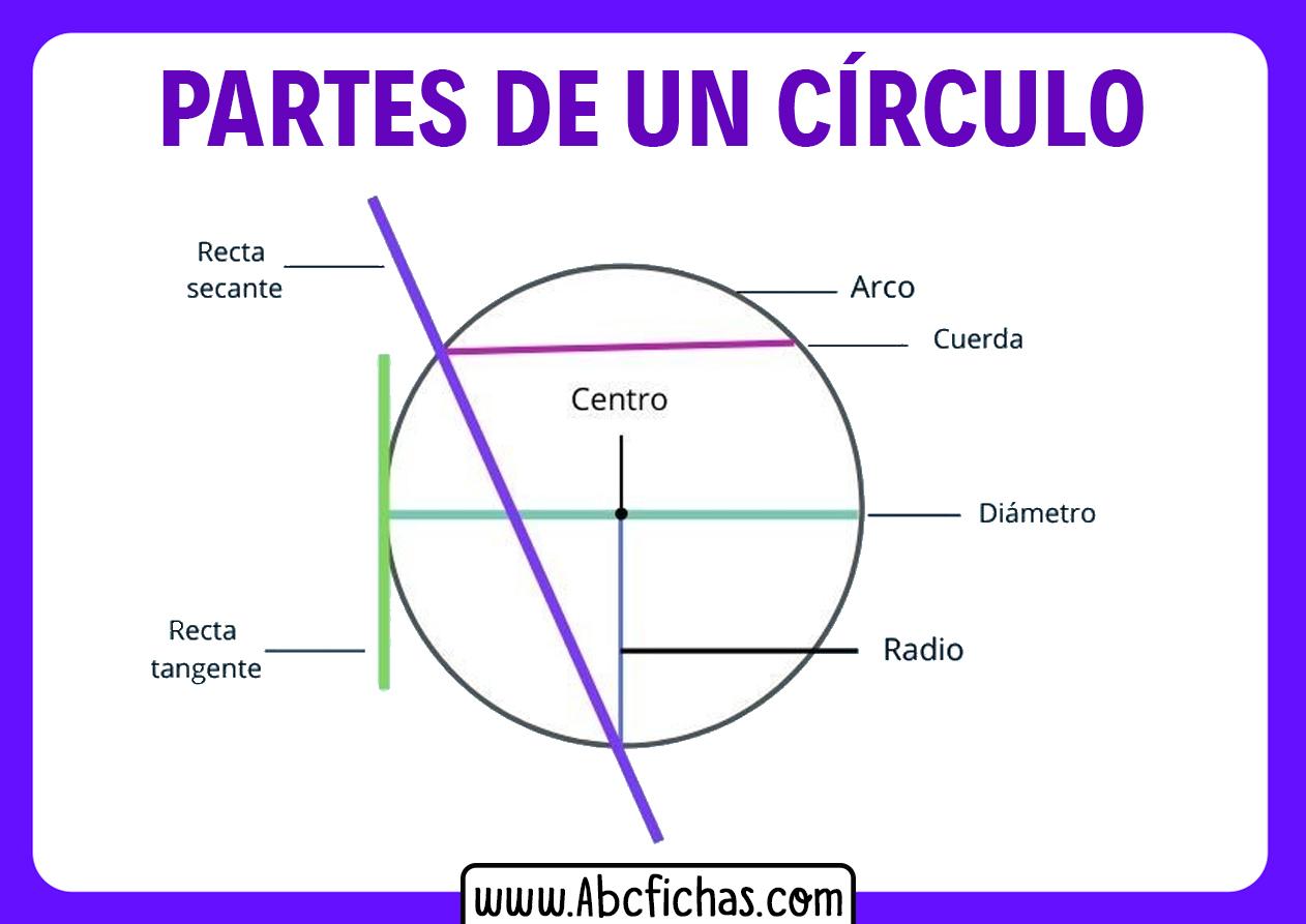 Partes de un circulo