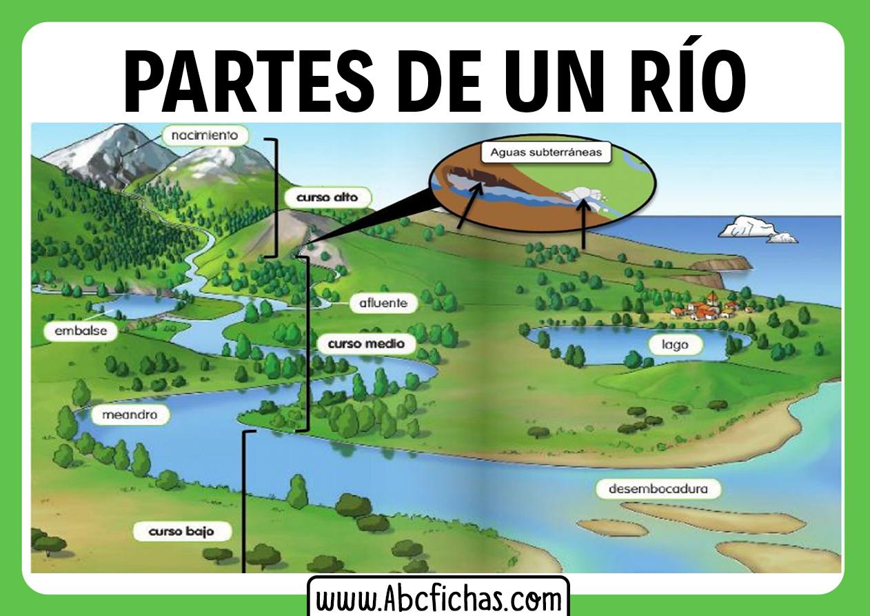 Partes de un rio estructura del rio