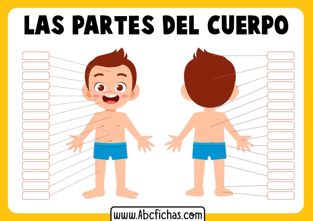 Partes del cuerpo para niños para completar