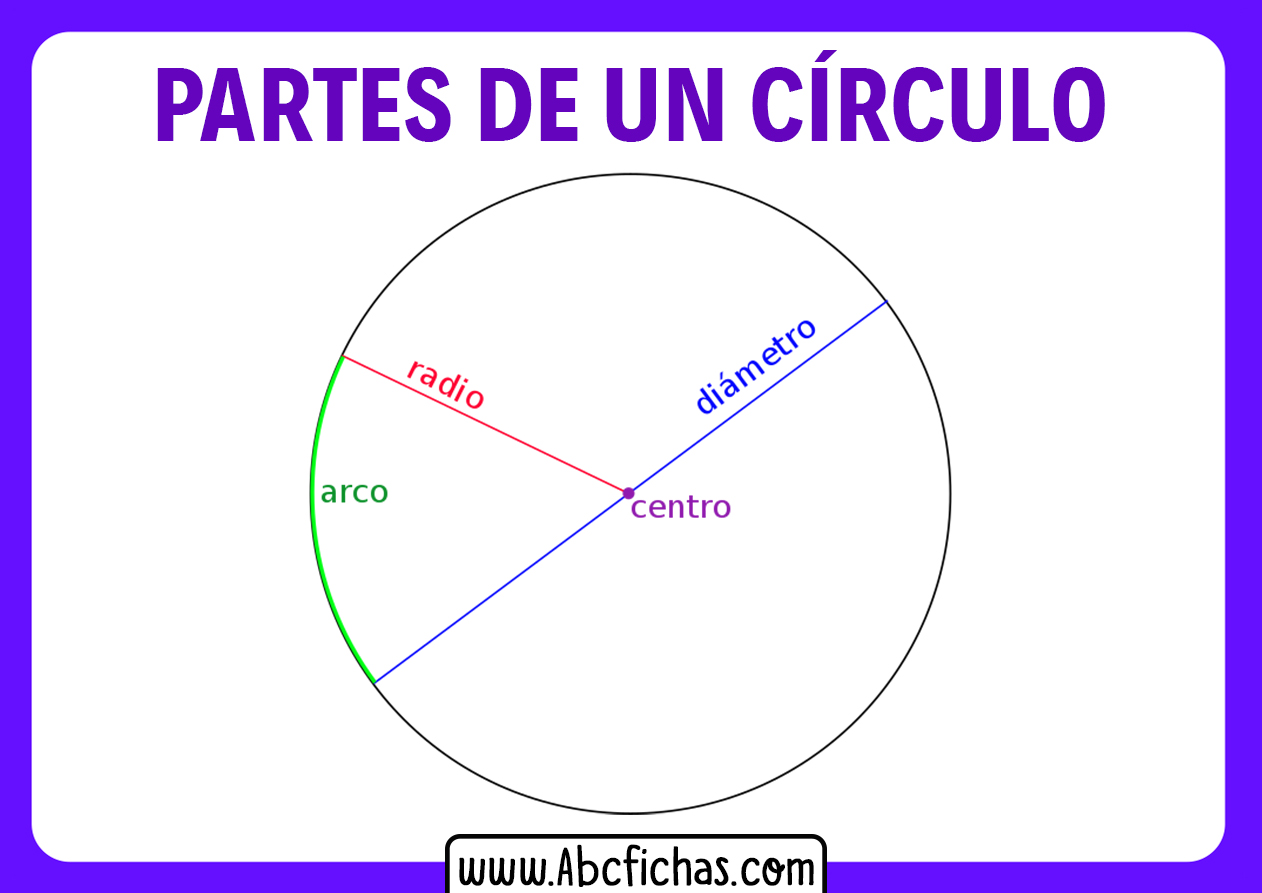 Partes y elementos de un circulo