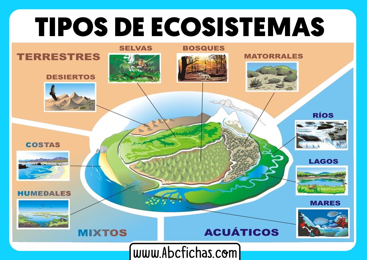 Tipos de ecosistemas que existen