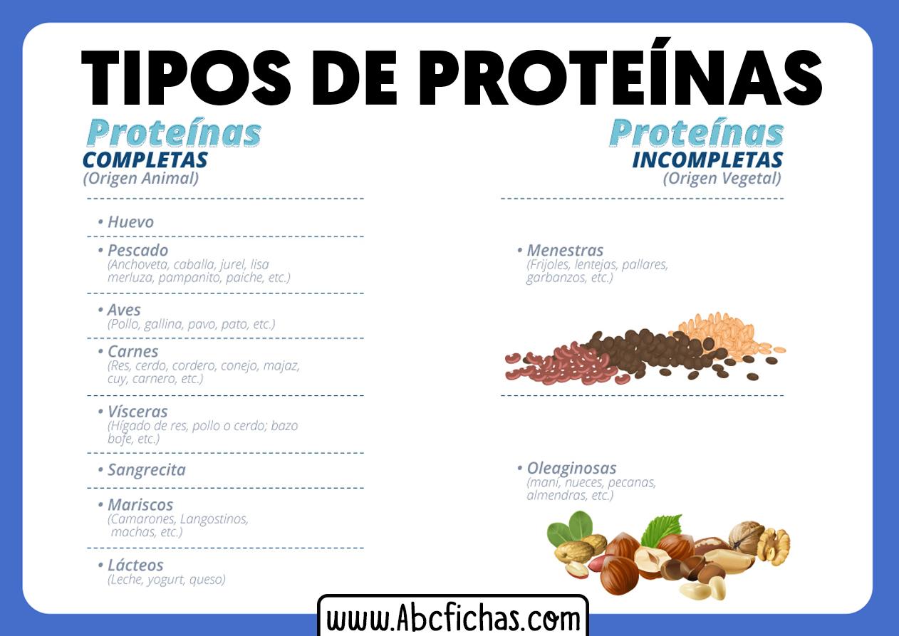 Tipos de proteinas en los alimentos